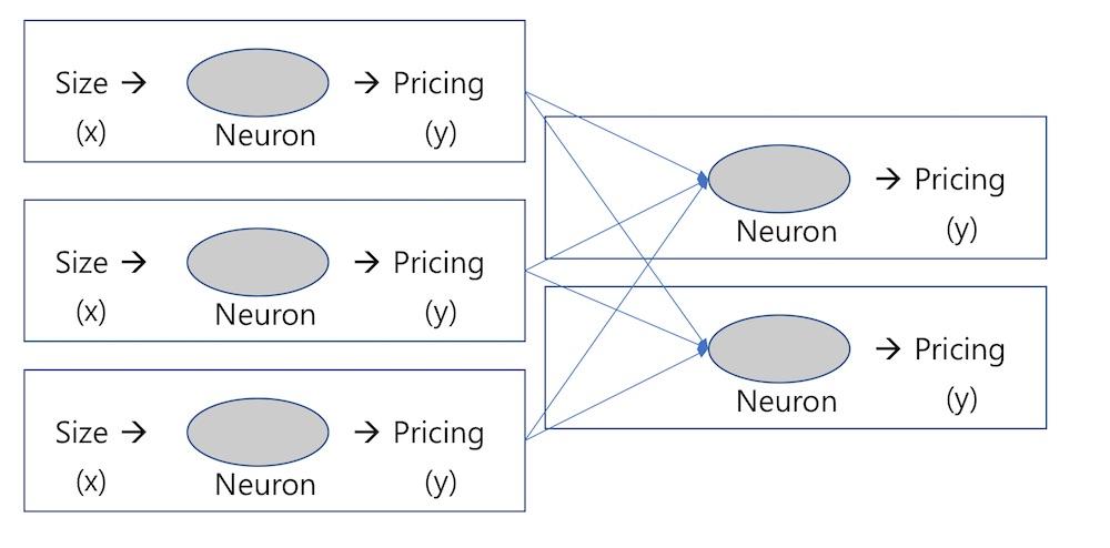 뉴런의 결합, 신경망