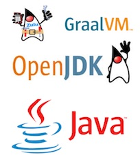 자바의 새로운 도약: OpenJDK(Feat. Oracle JDK Subscription)